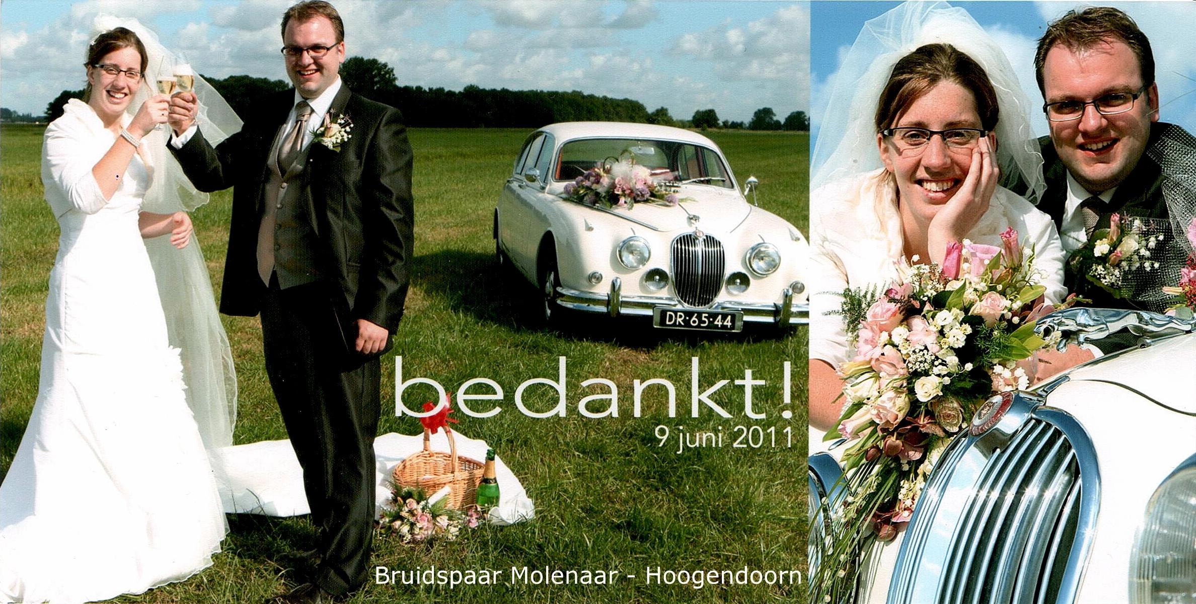 Bruidspaar Molenaar - Hoogendoorn