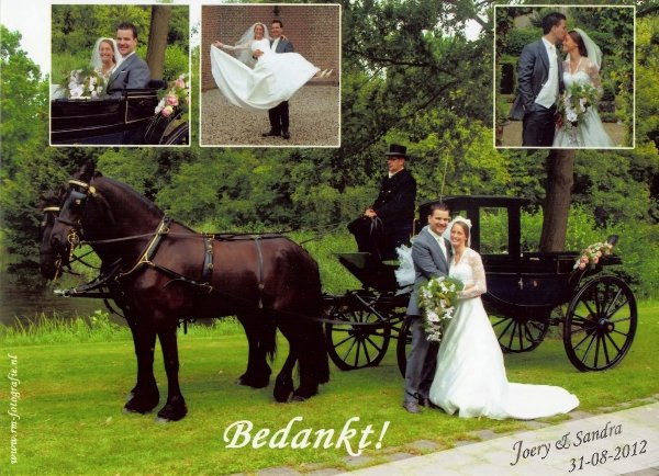Bruidspaar Joery Hollemans & Sandra van der Giessen