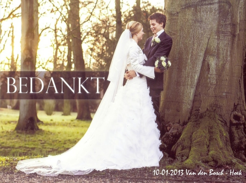 Bruidspaar Van den Bosch - Hoek (10-01-2013)