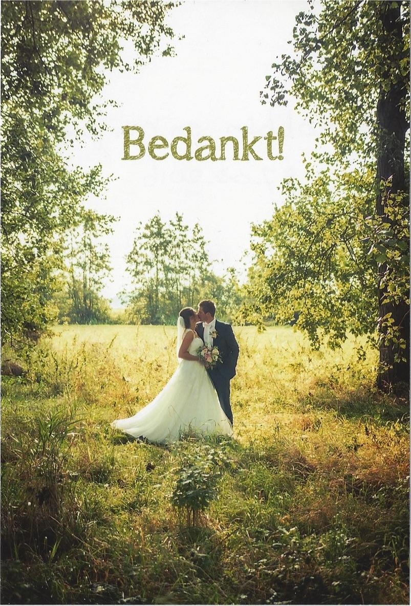 bruidspaar Robbin en van den Dool & Mirjam van der Hoff (27-08-2016)
